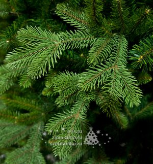 Искусственная елка ХиллКрест 152 cм, ЛИТАЯ + ПВХ National Tree Company фото 2